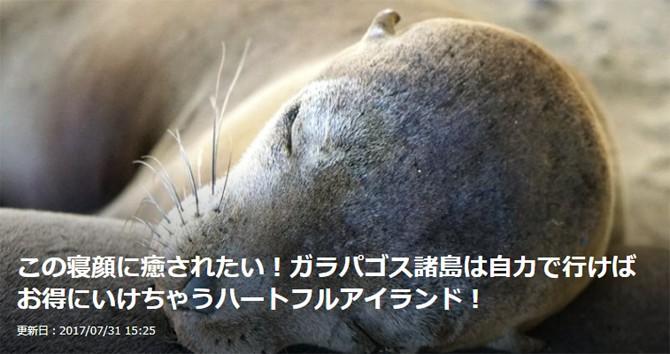 エクアドル ガラパゴス アザラシ Galapagos Sea Lions