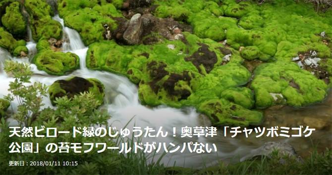 群馬 奥草津 チャツボミゴケ公園 Gunnma Okukusatsu Chatsubomigoke