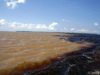 ブラジル マナウス Brazil Manaus