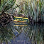 ミルフォード・サウンドの隠れた名所!明鏡止水の「ミラーレイク」