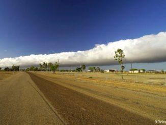 オーストラリア モーニング・グローリー, Australia Morning Glory