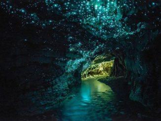 ニュージーランド ワイトモ洞窟 New Zealand Waitomo Cave