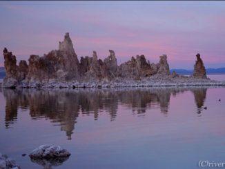 USA カリフォルニア モノ湖 California Mono Lake