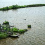 野人の杜!知られざる中国の新世界遺産「神農架」~その6「大九湖国家湿地公園」