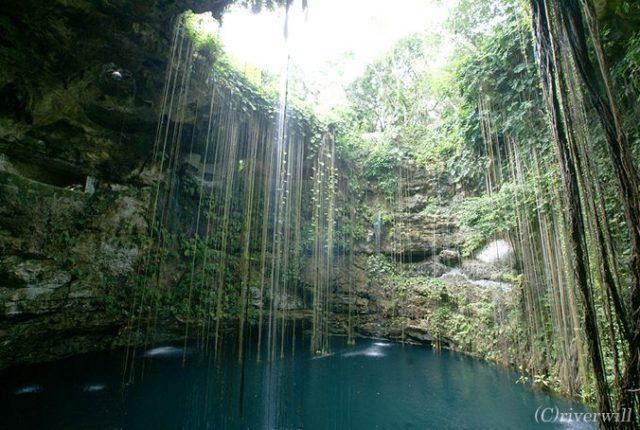 メキシコ イクキル セノーテ Mexico Ikukil Cenote