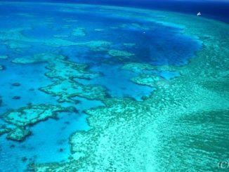 オーストラリア グレートバリアリーフ Australia Great Barrier Reef