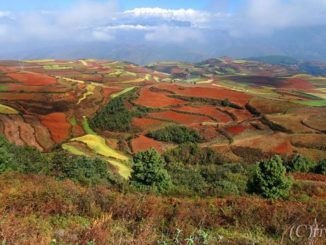 中国 昆明 東川紅土地 China Dongchuan red land