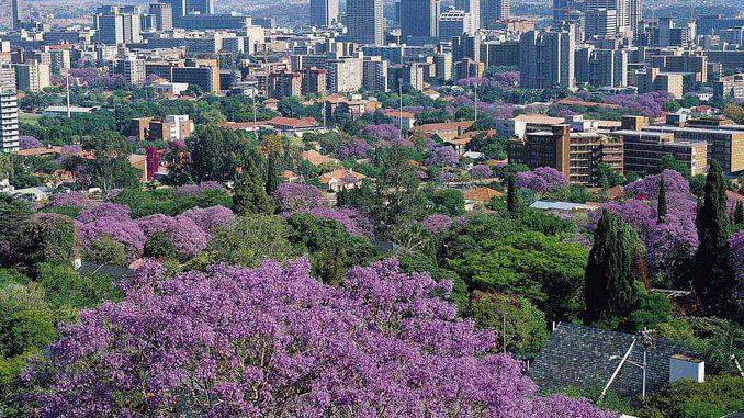 プレトリア ジャカランダシティ South Africa Pretoria Jacaranda City