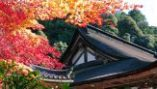 20 西明寺(滋賀) Japan's 34 most beautiful places
