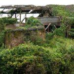 緑の草木に飲み込まれた神秘の廃村「后头湾(後頭湾)村」
