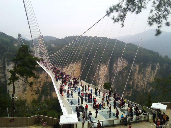 【高所恐怖症は閲覧注意】世界最長のガラスの吊り橋体験レポート
