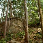 熊野古道・馬越(まごせ)峠コーストレッキング20070504