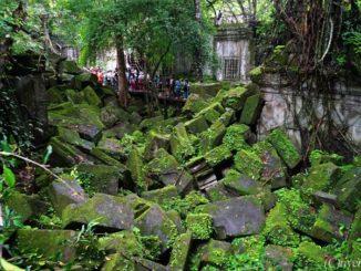 カンボジア ベンメリア Cambodia Beng Mealea