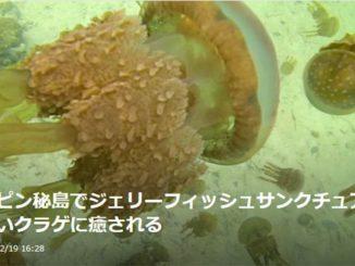 フィリピン ミンダナオ ブカスグランデ島 ジェリーフィッシュサンクチュアリ Philippines Mindanao Bucan Grande island Jelly fish sanctuary