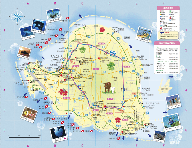 与論島マップ Yoron Island Map